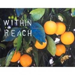 Talia Shipman - Within Reach