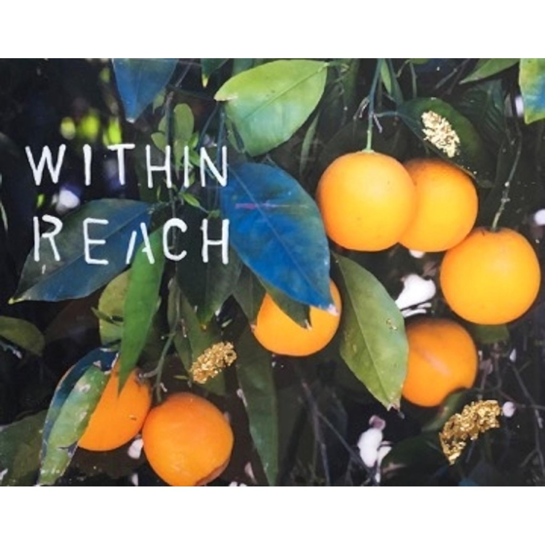 Within Reach by Talia Shipman