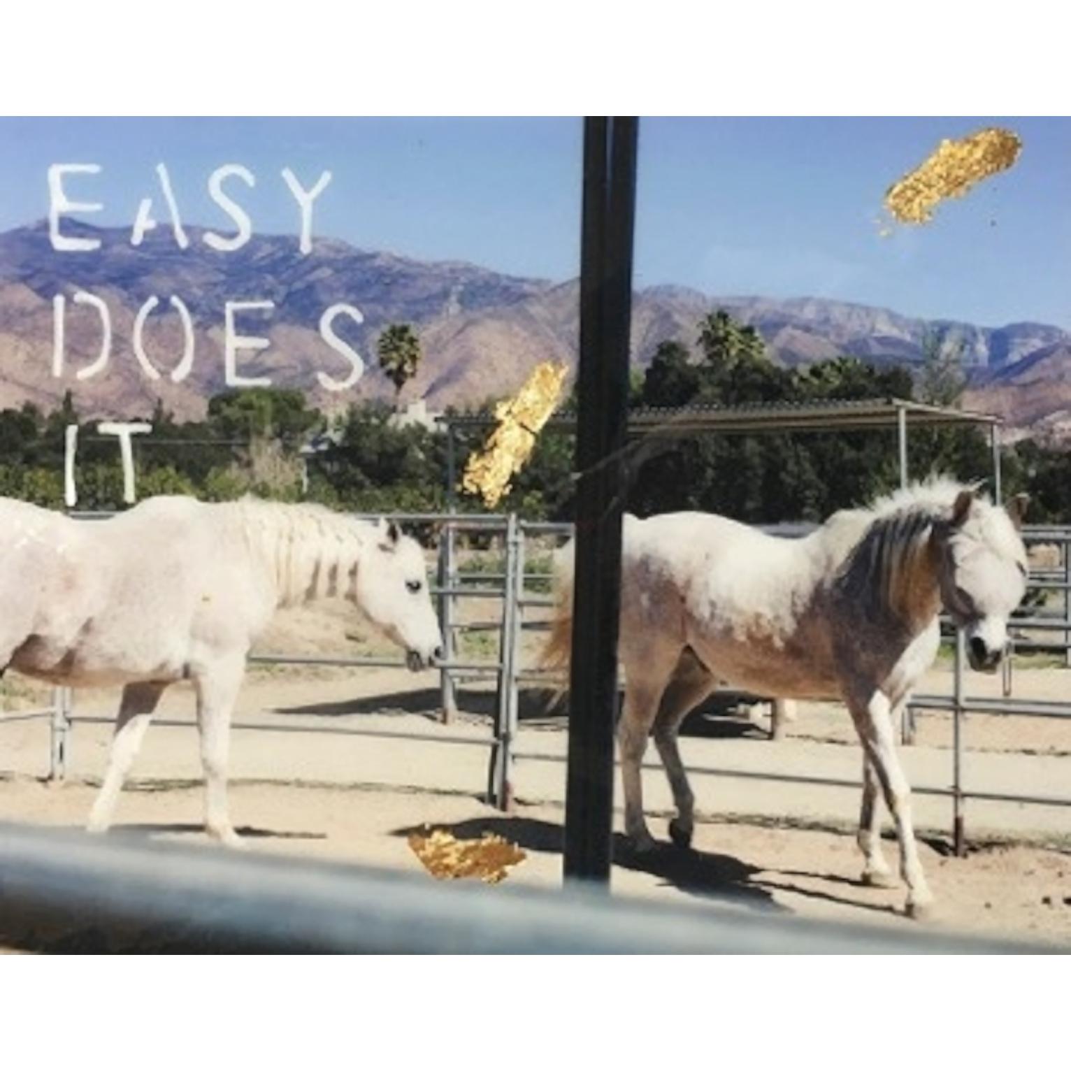 Easy Does It by Talia Shipman