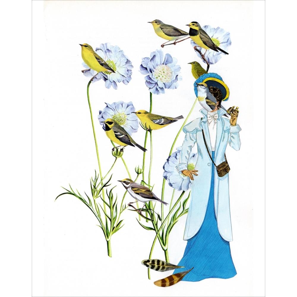 Lady Bird by Danielle  Cole