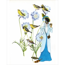 Danielle  Cole  - Lady Bird