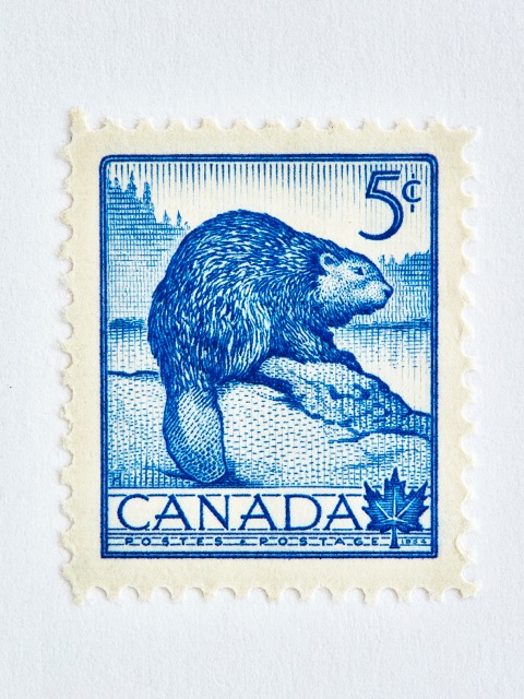 Wildlife Week Stamp- Beaver by Peter Andrew