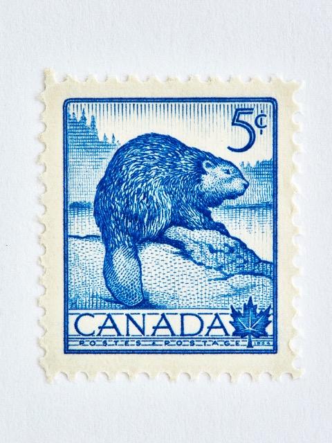 Wildlife Week Stamp- Beaver by Peter Andrew