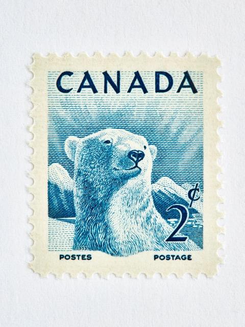 Wildlife Week Stamp- Polar Bear by Peter Andrew
